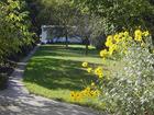 Garten am Ferienhaus Falkert
