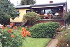 Garten an der Fewo Weste