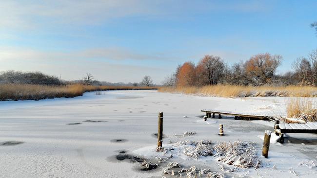 Recknitz im Winter