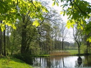 Frühling im Schlosspark Kölzow