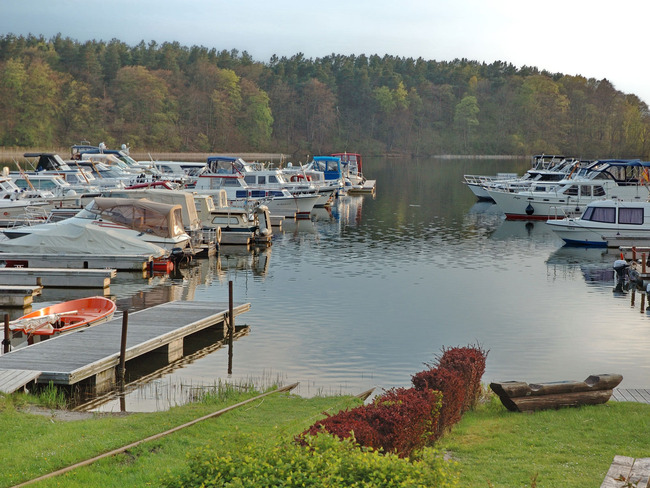 Ufer Ellbogensee