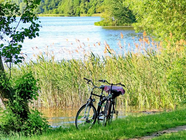 Fahrräder am Wockersee