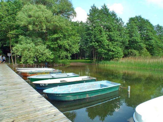 Steg - Ruderboote