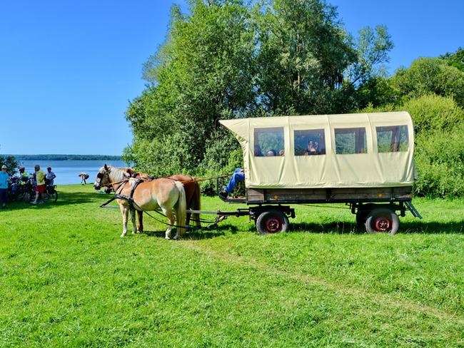 Kremserstop am Schweriner See