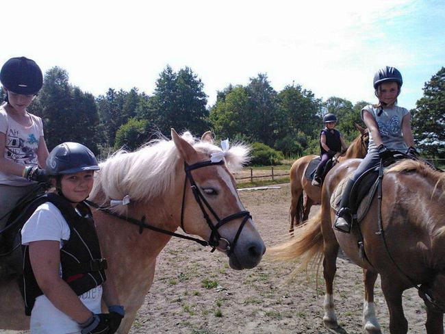 Pferde - Mädchen