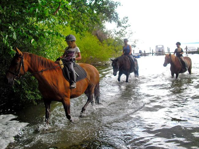 Pferde -  Reiterurlaub im Ferienpark Retgendorf am Schweriner See