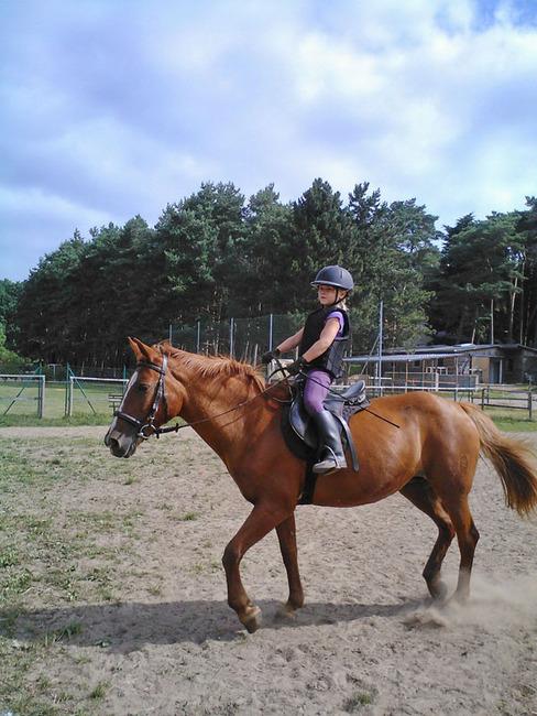 Reitanlage - Pferd, Mädchen