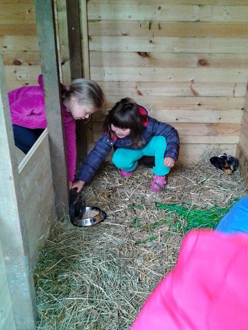 Stall - Mädchen Streichelzoo im Ferienpark Retgendorf