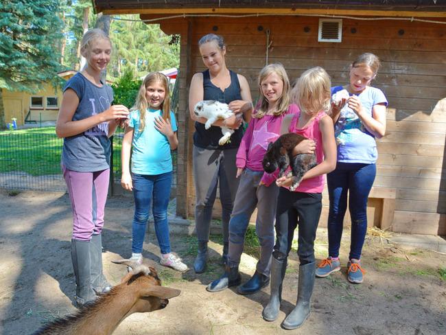 Streichelgehege für Kinder im Ferienpark Retgendorf