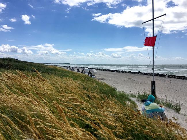 Dünen, Strand mit Strandkörben und Ostsee bei Wind und Sonnenschein