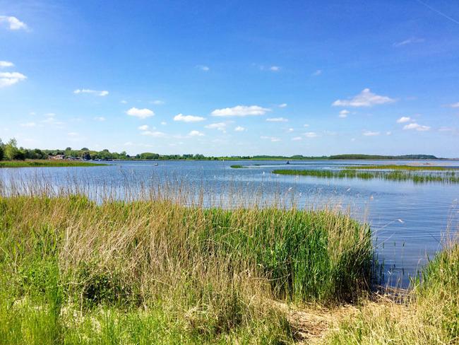 Ausblick vom Ufer auf den Peenestrom und die herrliche Landschaft