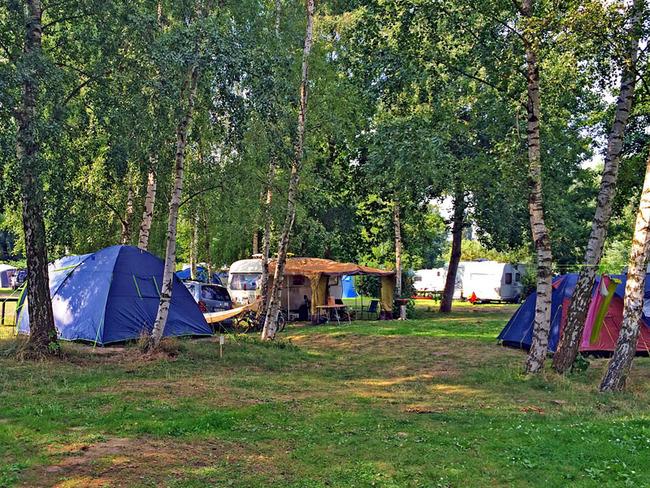 schattige Stellplätze unter Bäumen für Zelte, Wohnwagen und Wohnmobile