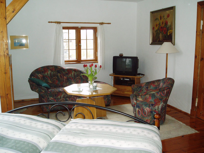 Wohnraum der Ferienwohnung mit Couch und TV