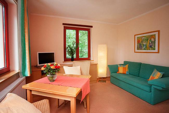 Fewo Birke - Wohnzimmer mit Couch, TV und Esstisch
