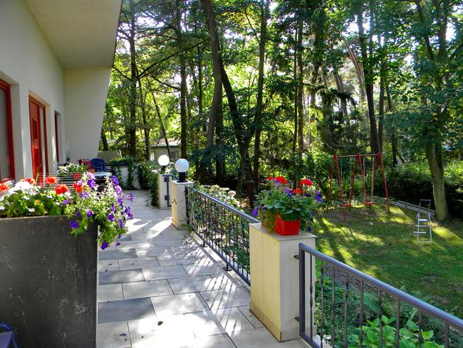 Terrasse umgeben vom Küstenwald