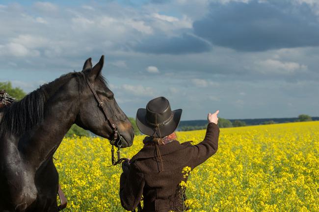 Reiterin mit Pferd am Rapsfeld