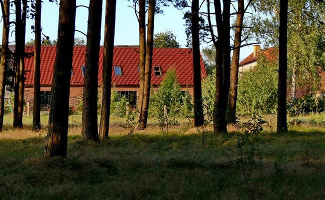 Blick aus dem angrenzenden Wald - ©Rainer Präger