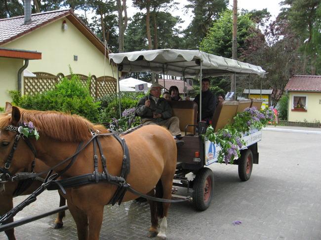 Kremserfahrt am Herrentag im Ferienpark Retgendorf