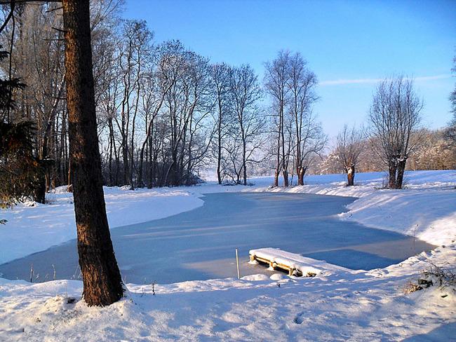 Ferienhof ferien und bauernhof diederichs for Goldfische im winter im teich