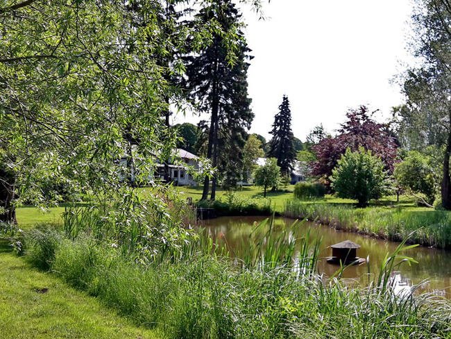 unser großer Park mit Teich