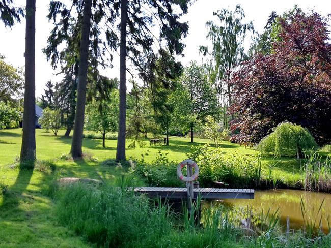 Teich mit Steg im Park