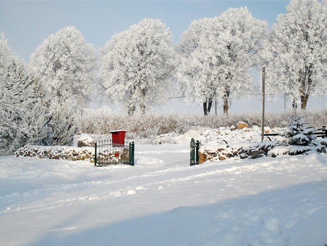verschneite Winteridylle auf dem Ferien- und Bauernhof Diederichs