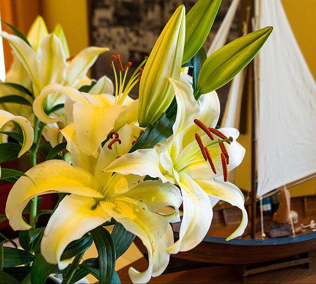 Blumendekoration im Frühstücksrestaurants