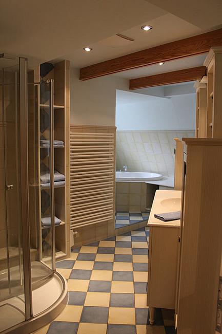 Appartement IV - Bad mit Dusche und Regal