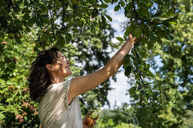 Frau beim Apfelpflücken I © TMV/Tiemann