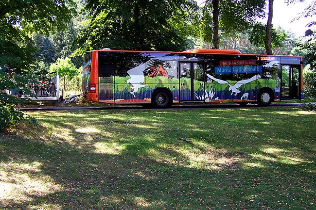 Nationalparkbus mit Fahrradanhänger