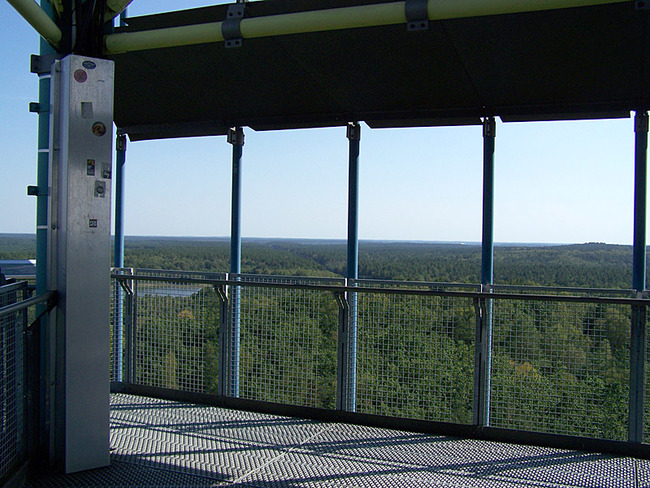 Käflingsbergturm im Müritz Nationalpark