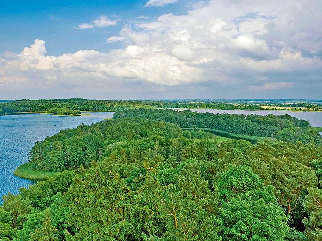 Naturpark Nossentiner/Schwinzer Heide