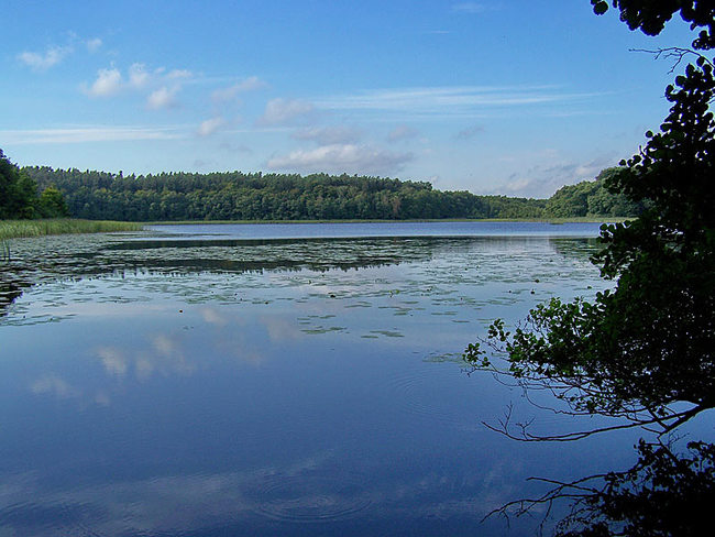 Dambecker See bei Pievestorf