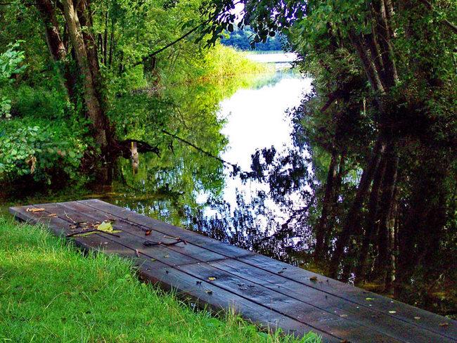Blick von der Kanueinsetzstelle Granzin zum Granziner See
