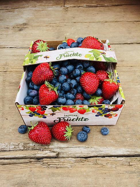feldfrische Erdbeeren und Heidelbeeren