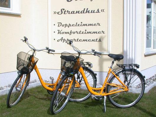 Frühlingserwachen mit Fahrrad und Lunchpaketen